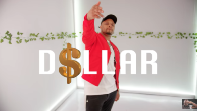 "[Video] B-Red - ""Dollar"" ft. Davido x Peruzzi"