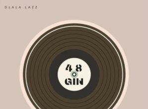 Dlala Lazz - 48 Gin Ft. Funky Qla Mp3 Audio Download