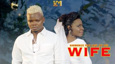 Harmonize Wife Video