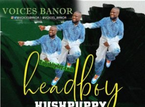 PicsArt 1592136270277 296x300 Afro Beat Za - Voices Banor – Headboy Hushpuppy (They Will Catch You)